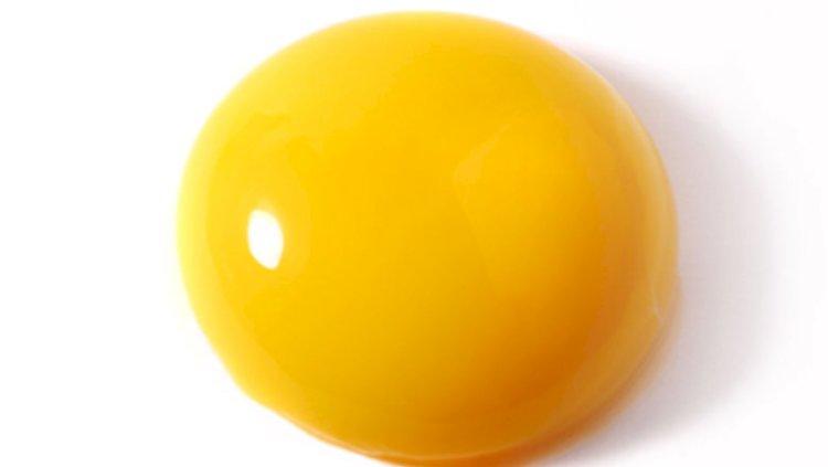 Yumurta sarısı sağlığa zararlı mı?